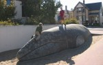 Beached Whale turned to stone!